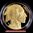 バッファローゴールド50ドルコイン2009年プルーフ(レプリカコイン)