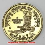 超ビッグ!?1ドルリバティーコイン 2000