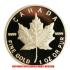メイプル金貨 メイプルリーフ 1オンス 2005年製(レプリカコイン)の画像2